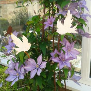 Metal dove plant stakes