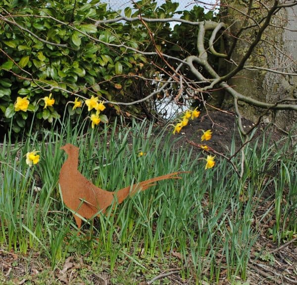Life size rusty pheasnt on stand